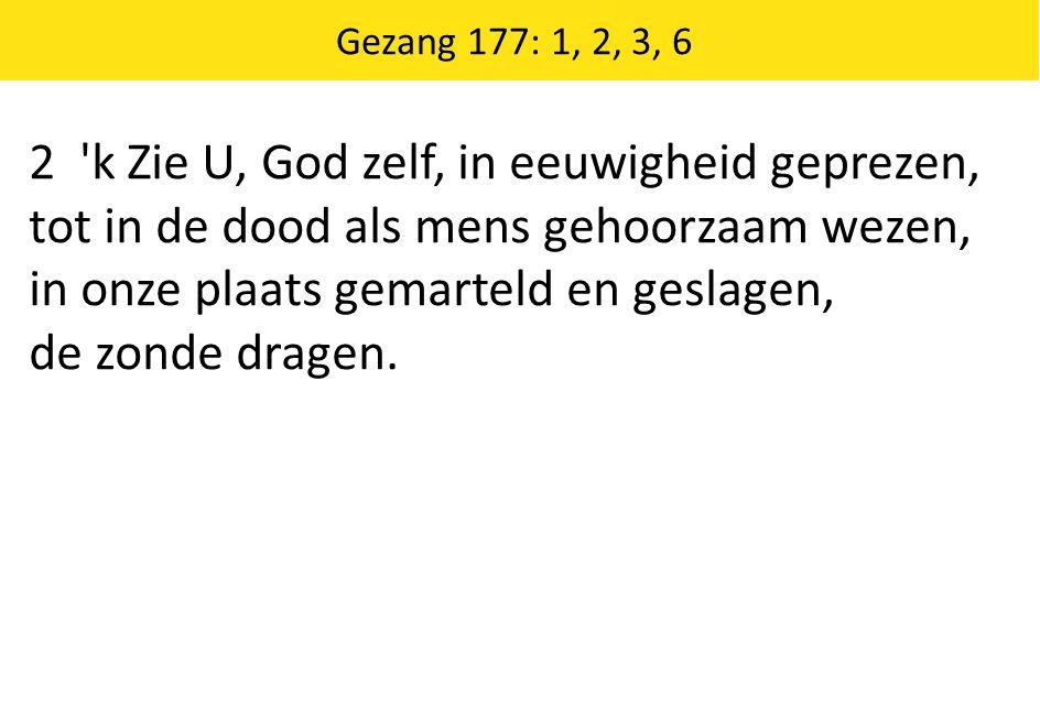 2 k Zie U, God zelf, in eeuwigheid geprezen,