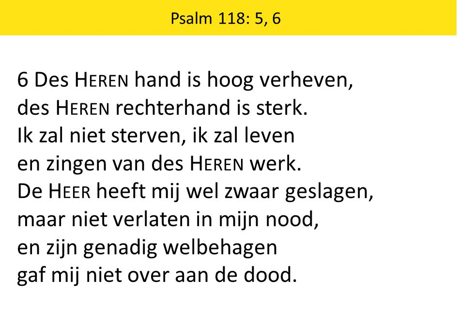 6 Des Heren hand is hoog verheven, des Heren rechterhand is sterk.