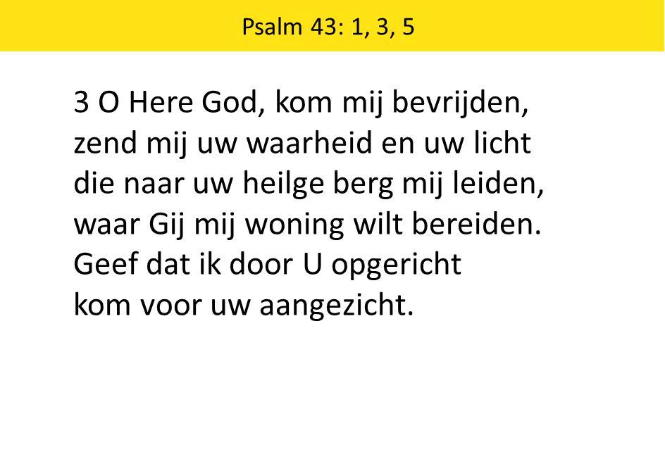 3 O Here God, kom mij bevrijden, zend mij uw waarheid en uw licht