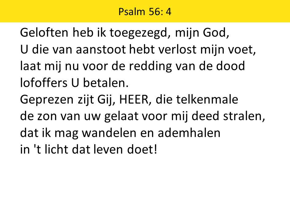 Psalm 56: 4