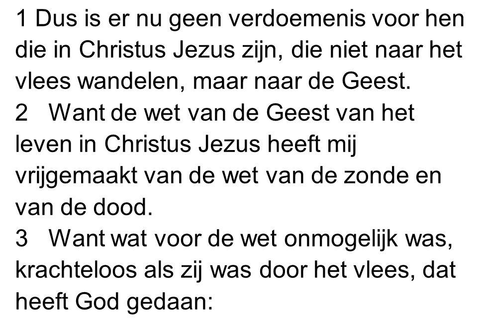 1 Dus is er nu geen verdoemenis voor hen die in Christus Jezus zijn, die niet naar het vlees wandelen, maar naar de Geest.