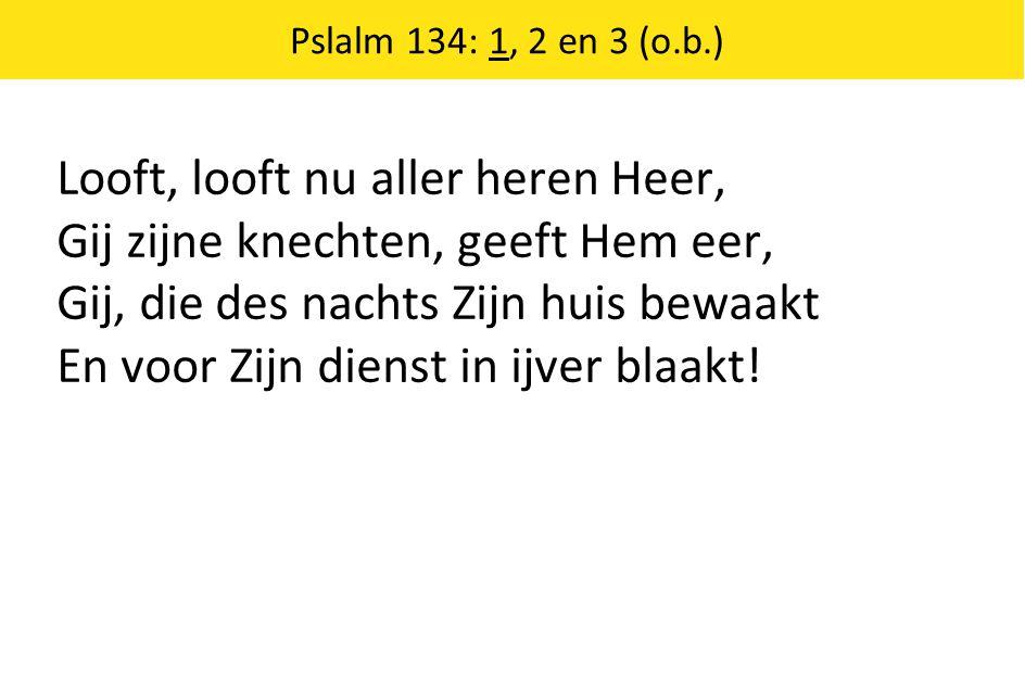 Looft, looft nu aller heren Heer, Gij zijne knechten, geeft Hem eer,