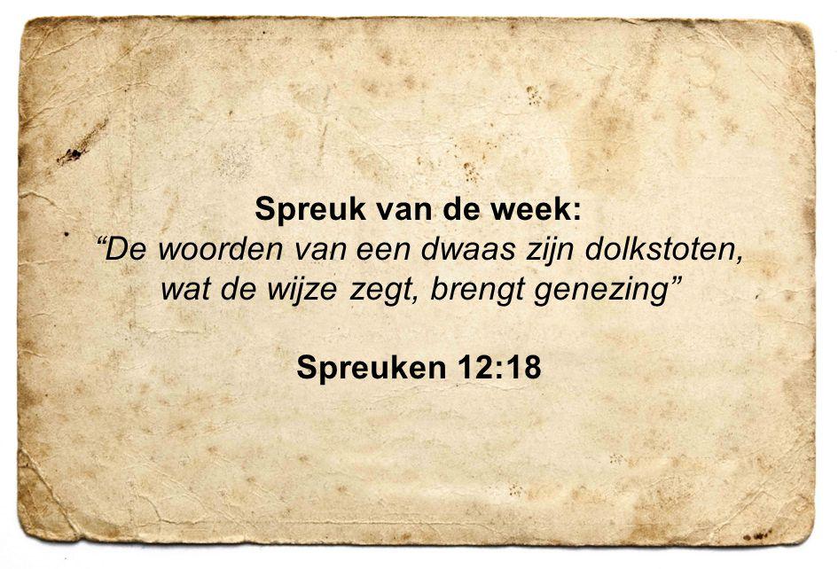 Spreuk van de week: Spreuken 12:18