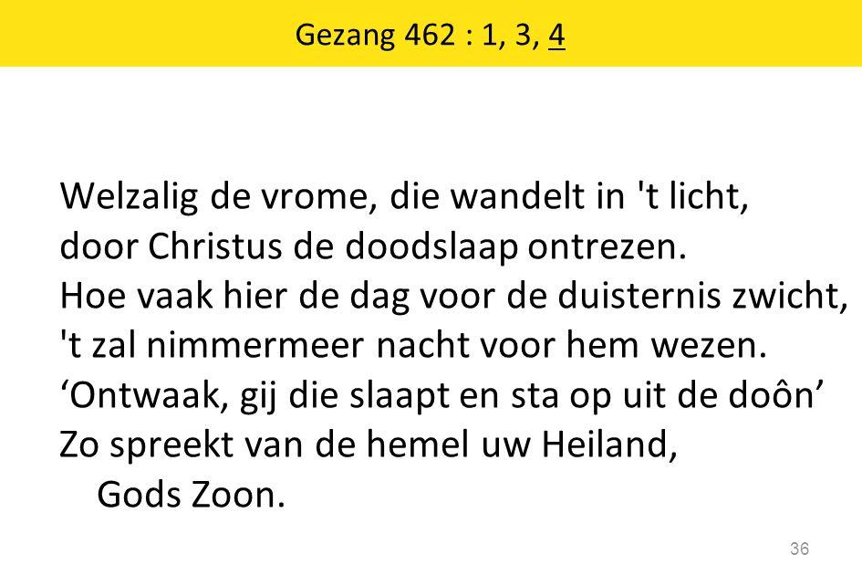 Gezang 462 : 1, 3, 4