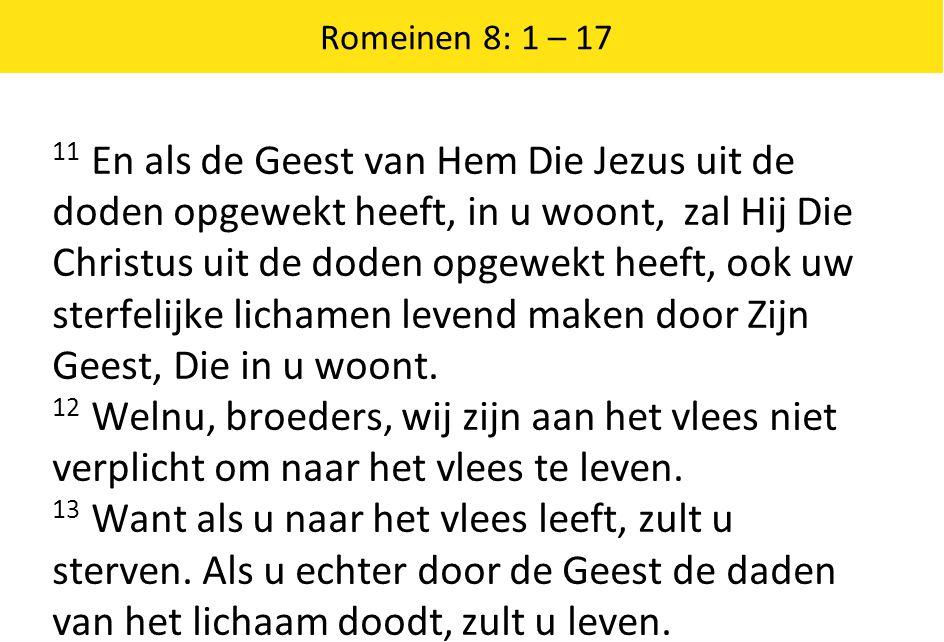 Romeinen 8: 1 – 17