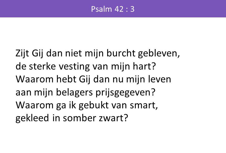 Psalm 42 : 3