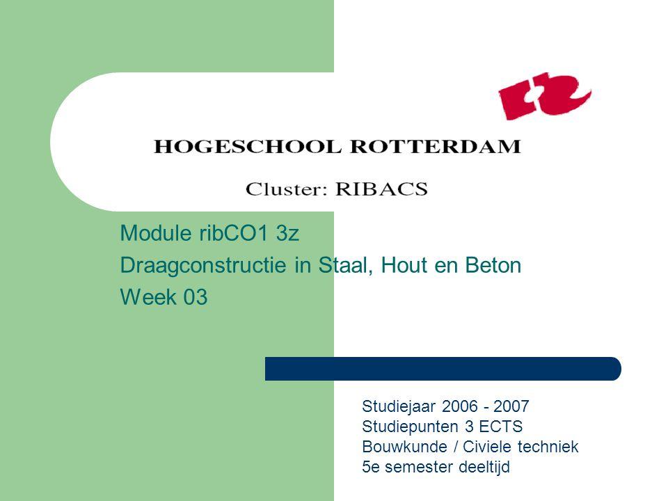 Module ribCO1 3z Draagconstructie in Staal, Hout en Beton Week 03