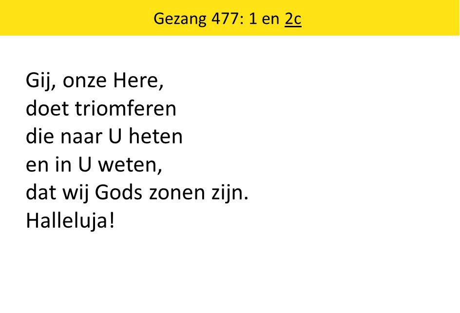 Gij, onze Here, doet triomferen die naar U heten en in U weten,