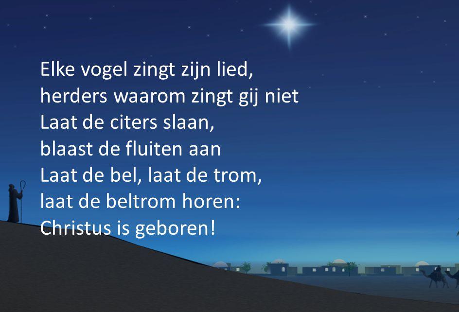 Elke vogel zingt zijn lied, herders waarom zingt gij niet Laat de citers slaan, blaast de fluiten aan Laat de bel, laat de trom, laat de beltrom horen: Christus is geboren!
