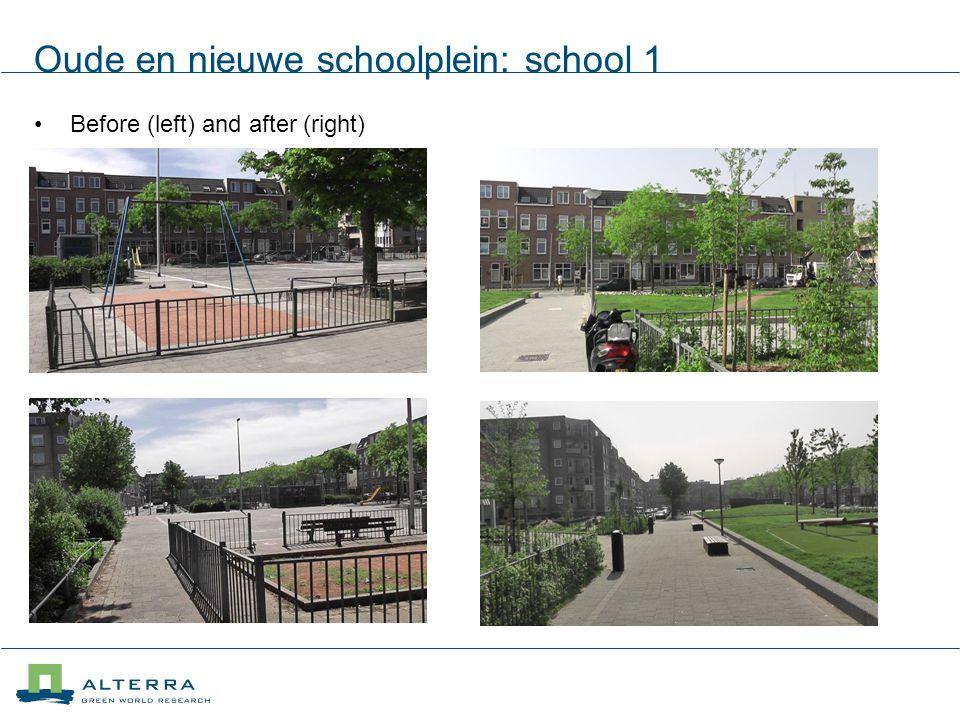 Oude en nieuwe schoolplein: school 1