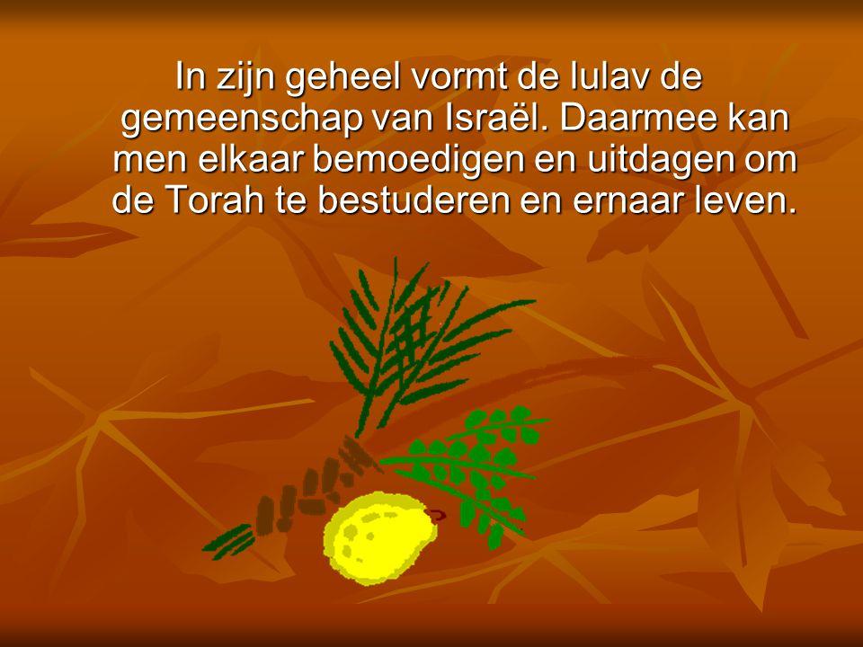 In zijn geheel vormt de lulav de gemeenschap van Israël