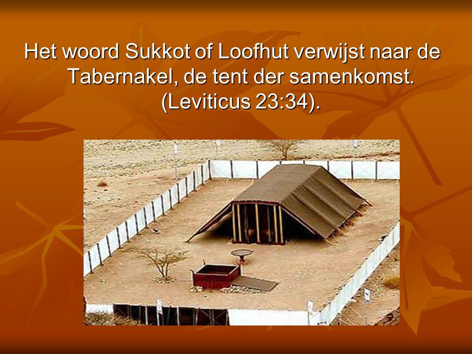 Het woord Sukkot of Loofhut verwijst naar de Tabernakel, de tent der samenkomst. (Leviticus 23:34).