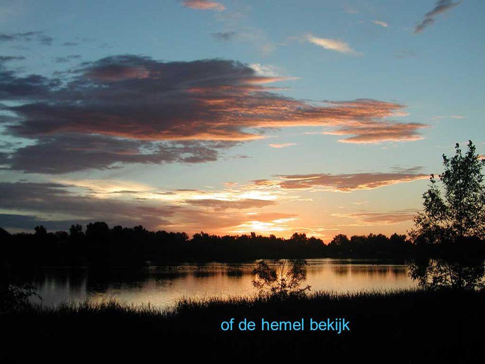 of de hemel bekijk