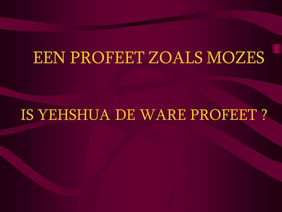IS YEHSHUA DE WARE PROFEET
