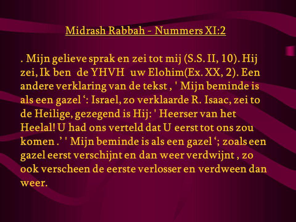 Midrash Rabbah - Nummers XI:2