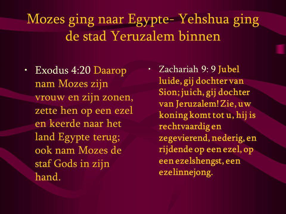 Mozes ging naar Egypte- Yehshua ging de stad Yeruzalem binnen