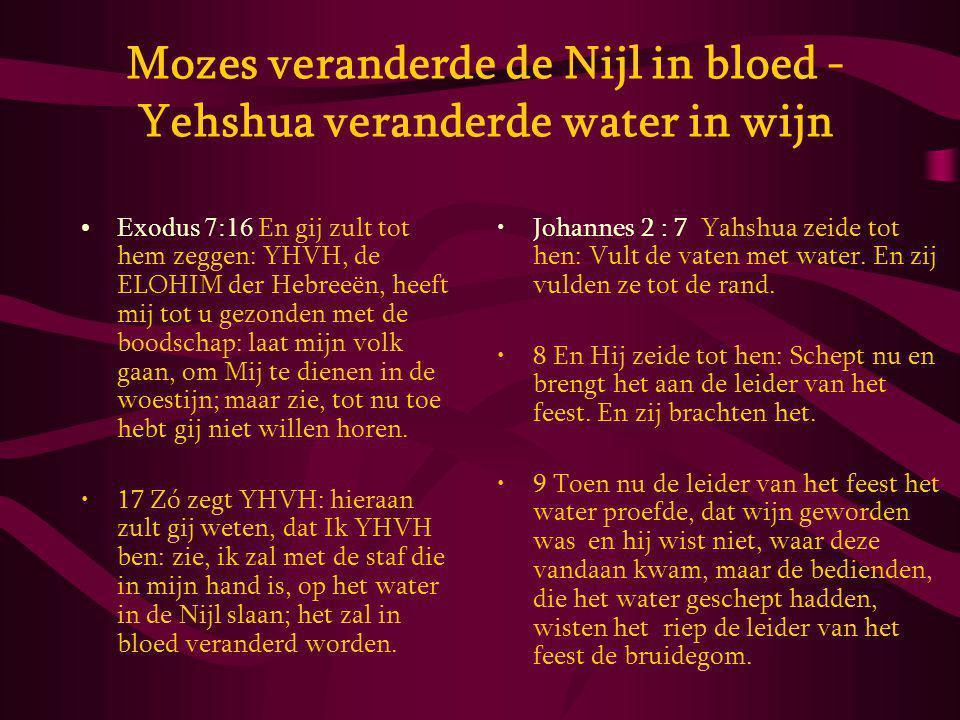 Mozes veranderde de Nijl in bloed - Yehshua veranderde water in wijn