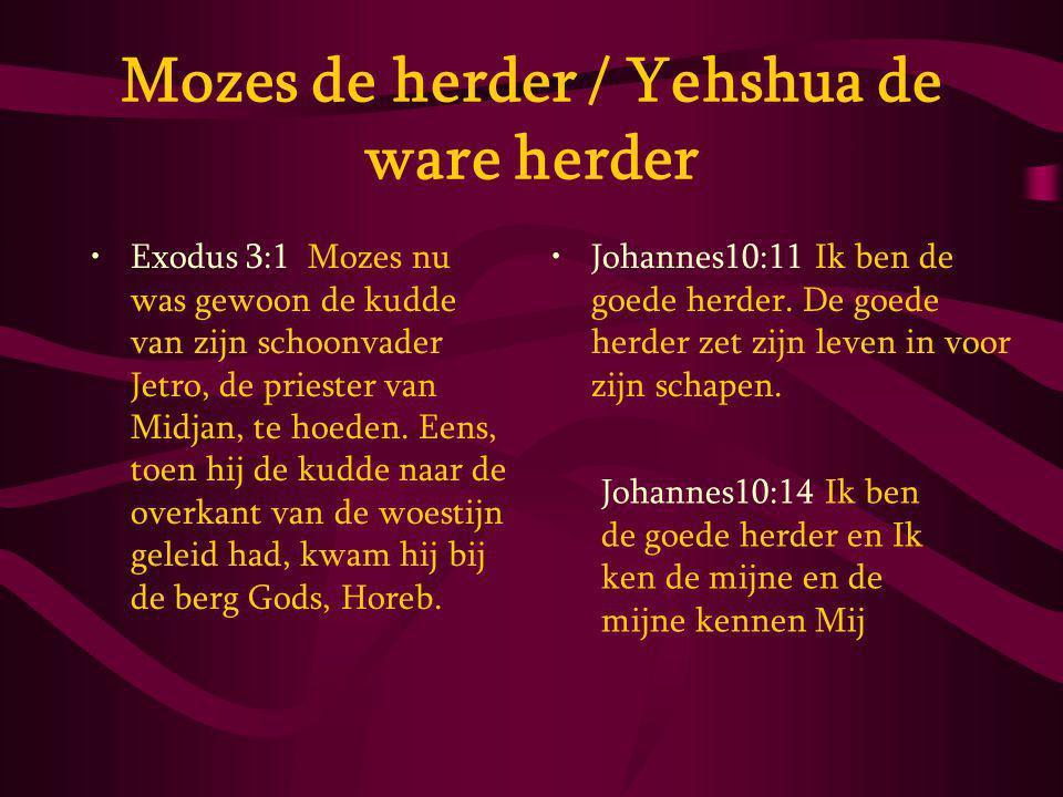 Mozes de herder / Yehshua de ware herder