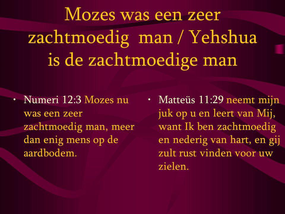 Mozes was een zeer zachtmoedig man / Yehshua is de zachtmoedige man
