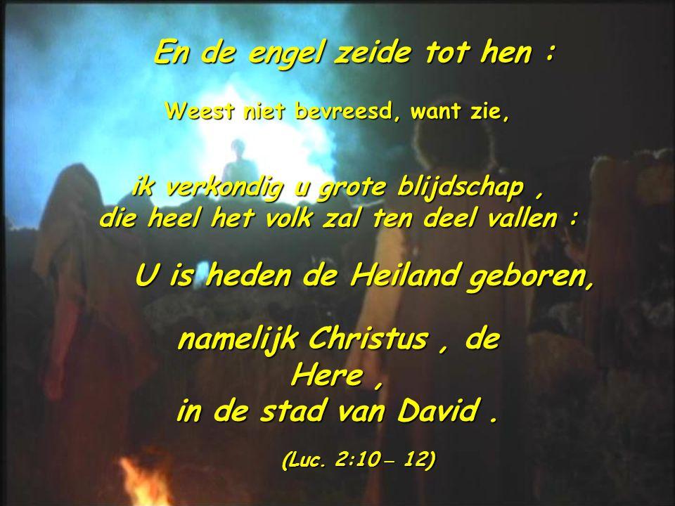En de engel zeide tot hen :