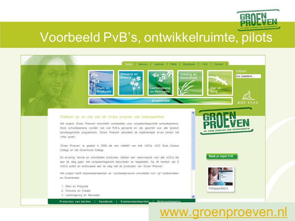 Voorbeeld PvB's, ontwikkelruimte, pilots