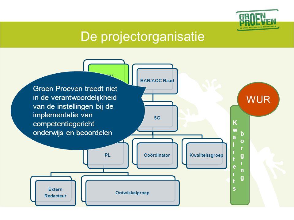De projectorganisatie