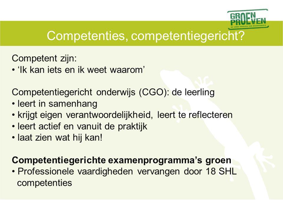 Competenties, competentiegericht