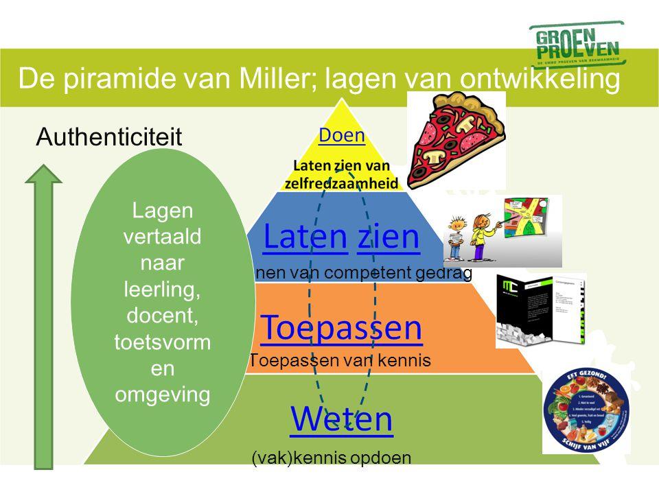 De piramide van Miller; lagen van ontwikkeling