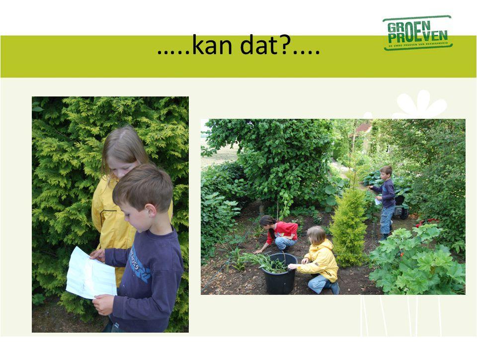 27-11-2012 Leergang Groen Proeven dag 2