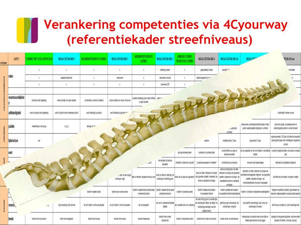 Verankering competenties via 4Cyourway (referentiekader streefniveaus)