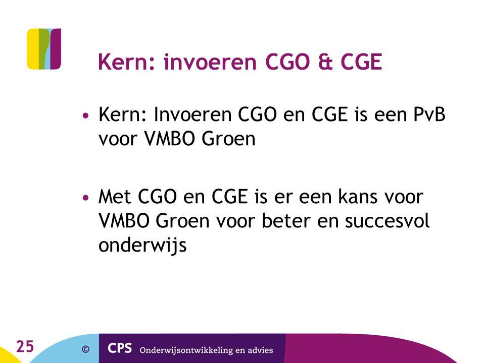Kern: invoeren CGO & CGE