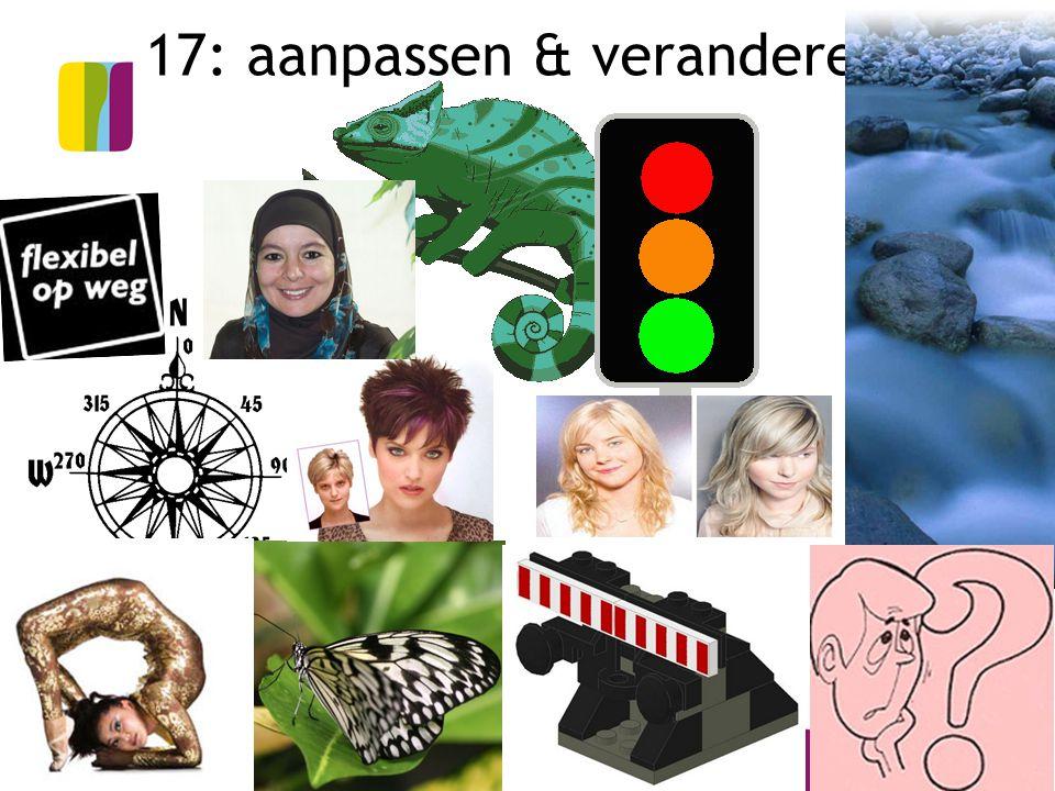 17: aanpassen & veranderen