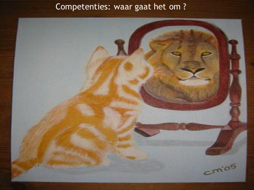 Competenties: waar gaat het om