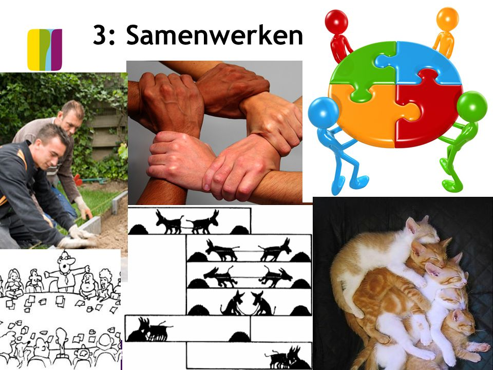 3: Samenwerken © CPS Onderwijsontwikkeling en advies