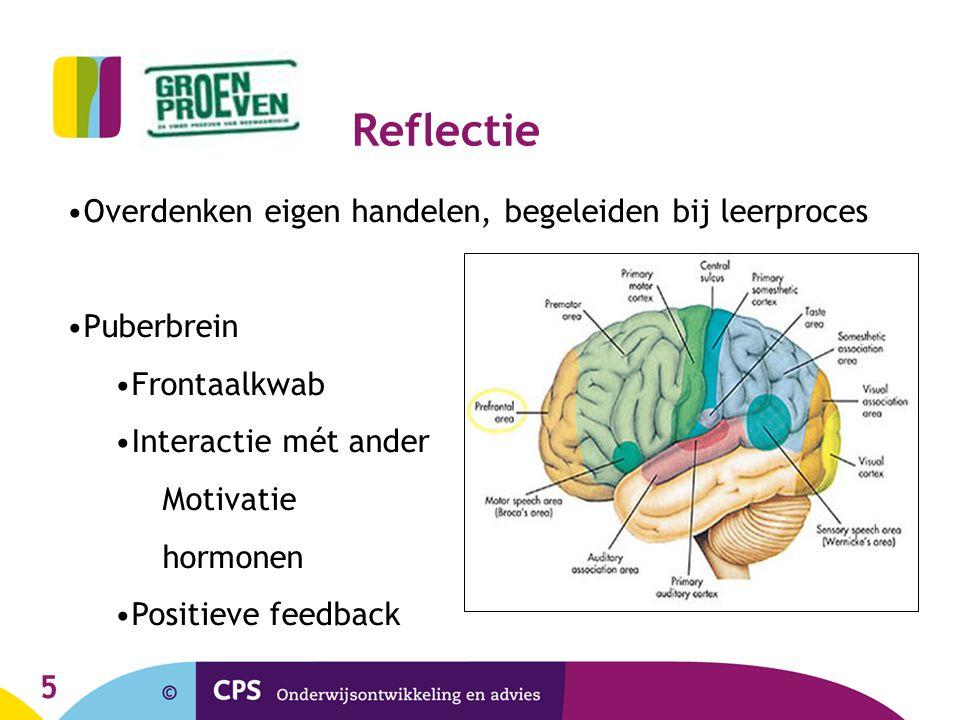 Reflectie Overdenken eigen handelen, begeleiden bij leerproces