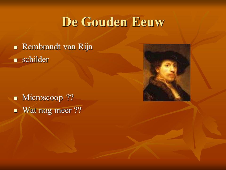 De Gouden Eeuw Rembrandt van Rijn schilder Microscoop