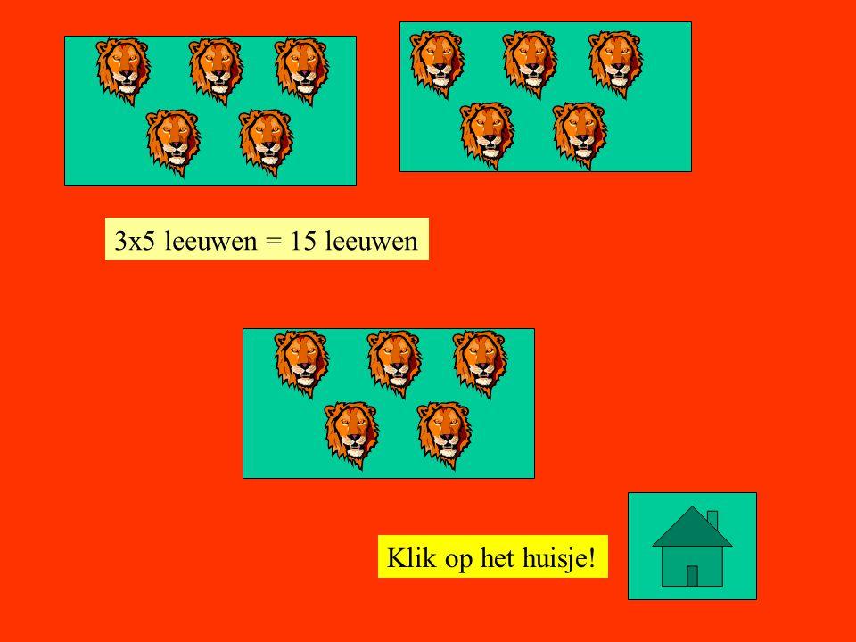 3x5 leeuwen = 15 leeuwen Klik op het huisje!
