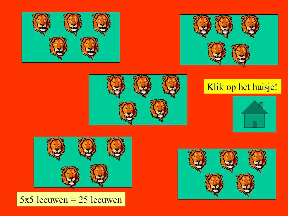 Klik op het huisje! 5x5 leeuwen = 25 leeuwen