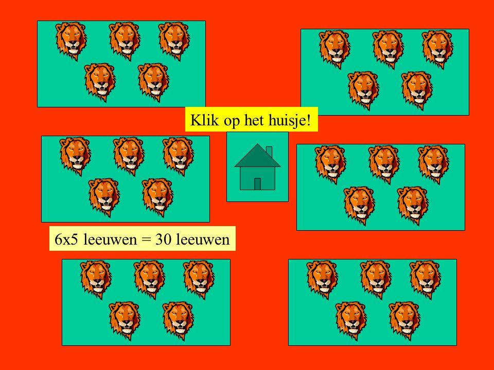 Klik op het huisje! 6x5 leeuwen = 30 leeuwen