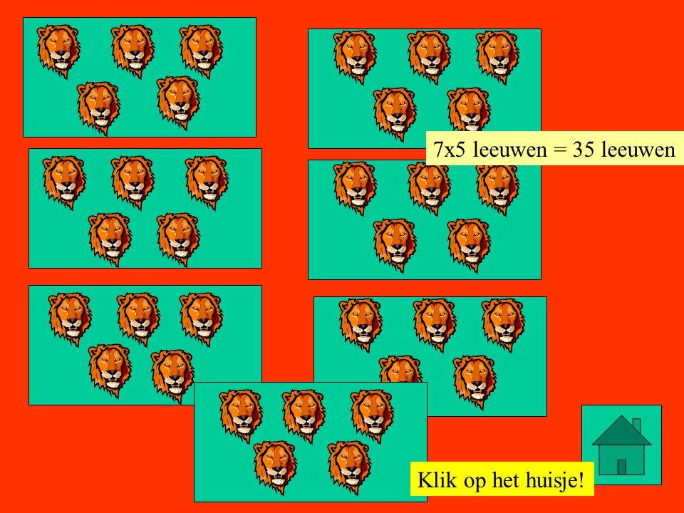 7x5 leeuwen = 35 leeuwen Klik op het huisje!