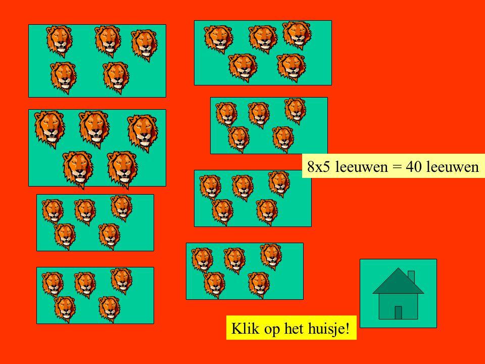 8x5 leeuwen = 40 leeuwen Klik op het huisje!
