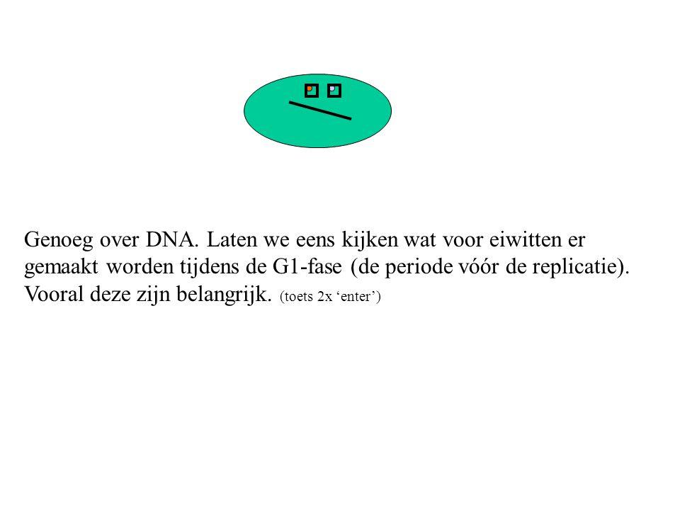 Genoeg over DNA. Laten we eens kijken wat voor eiwitten er