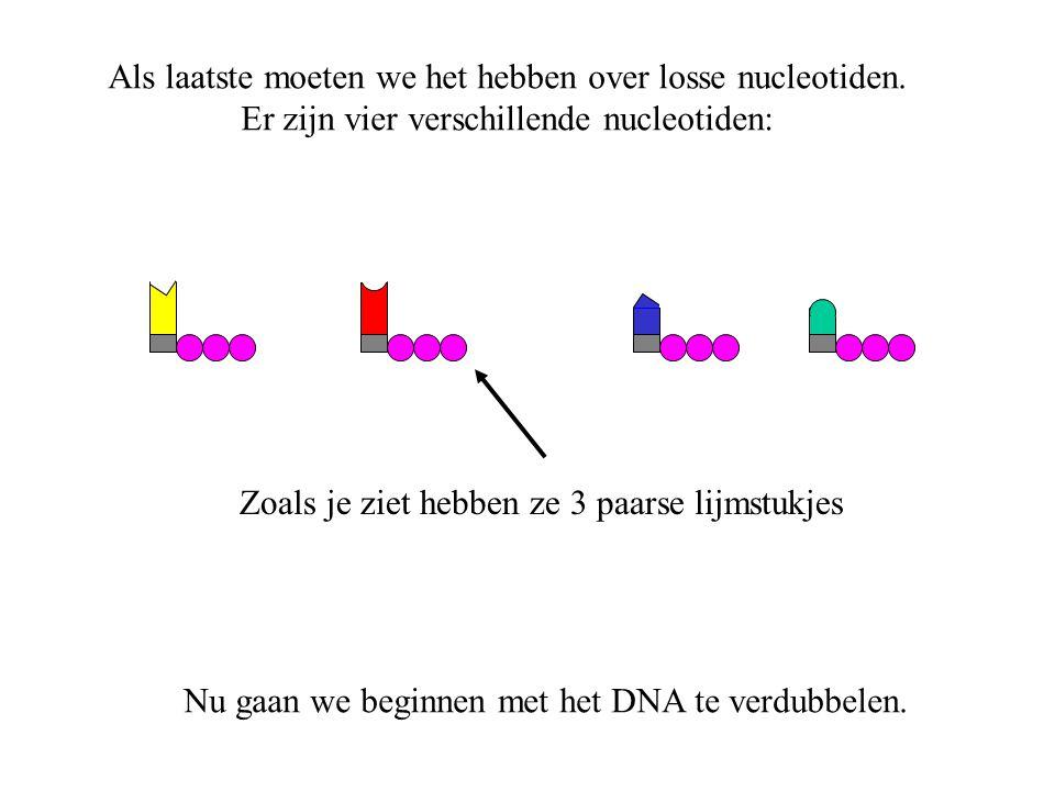 Als laatste moeten we het hebben over losse nucleotiden.