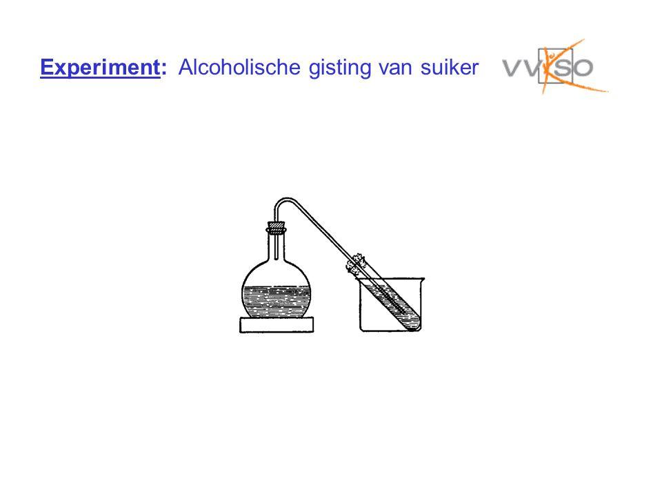 Experiment: Alcoholische gisting van suiker