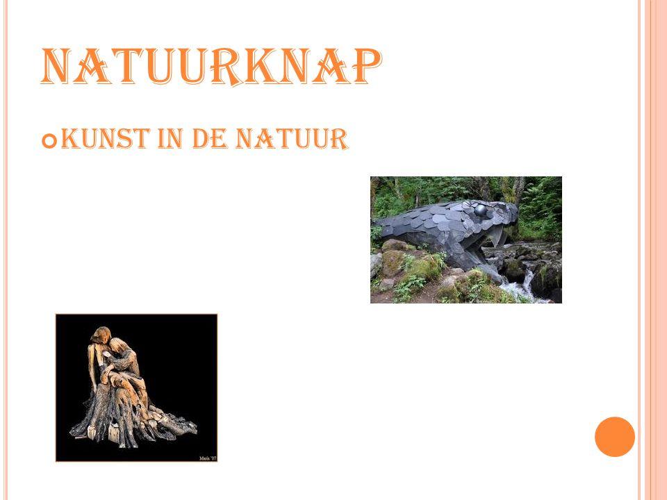 natuurknap Kunst in de natuur