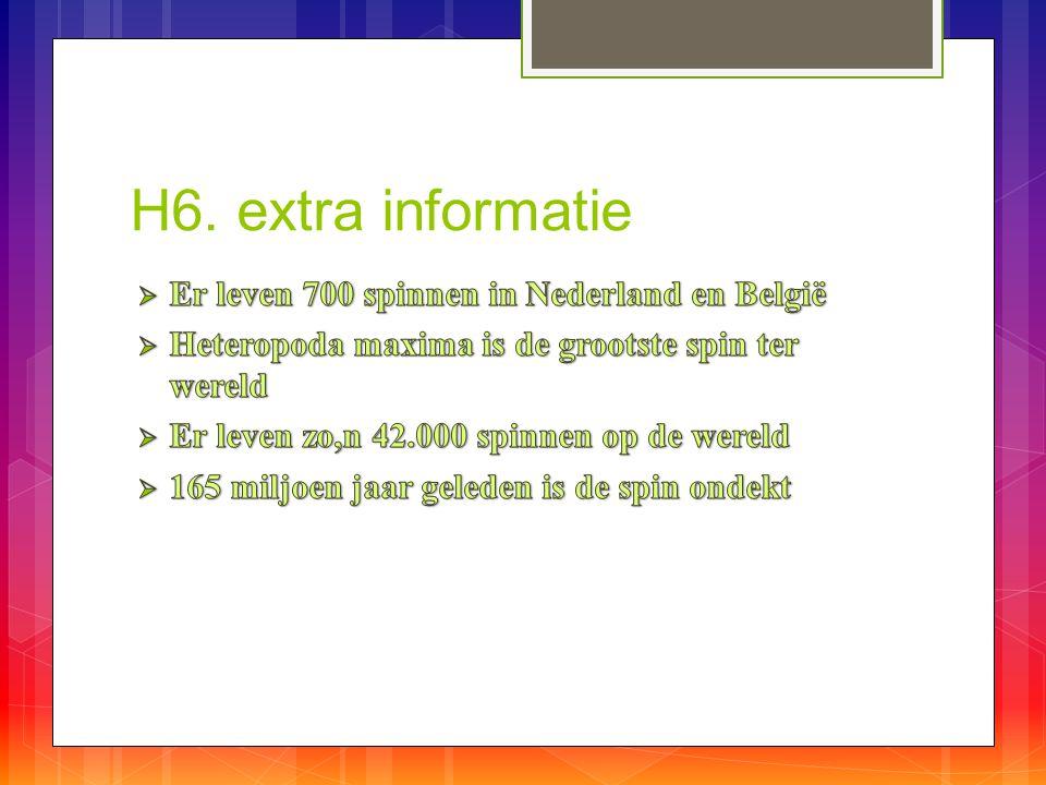 H6. extra informatie Er leven 700 spinnen in Nederland en België