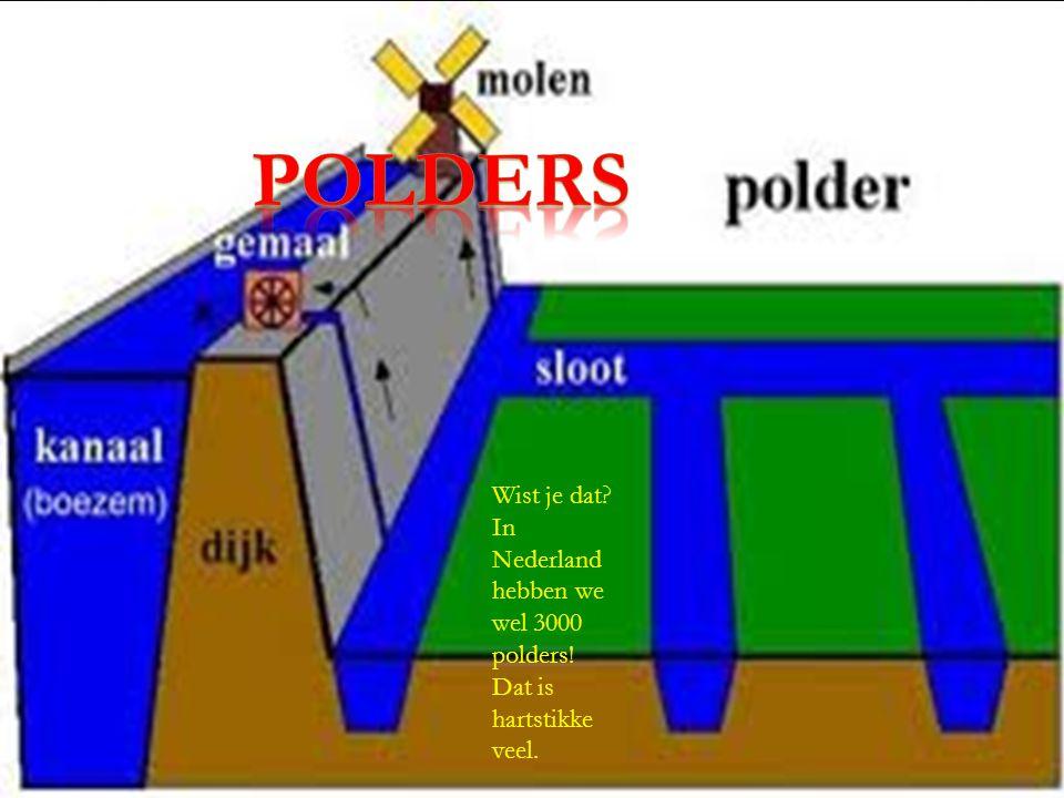 polders Wist je dat In Nederland hebben we wel 3000 polders! Dat is hartstikke veel.