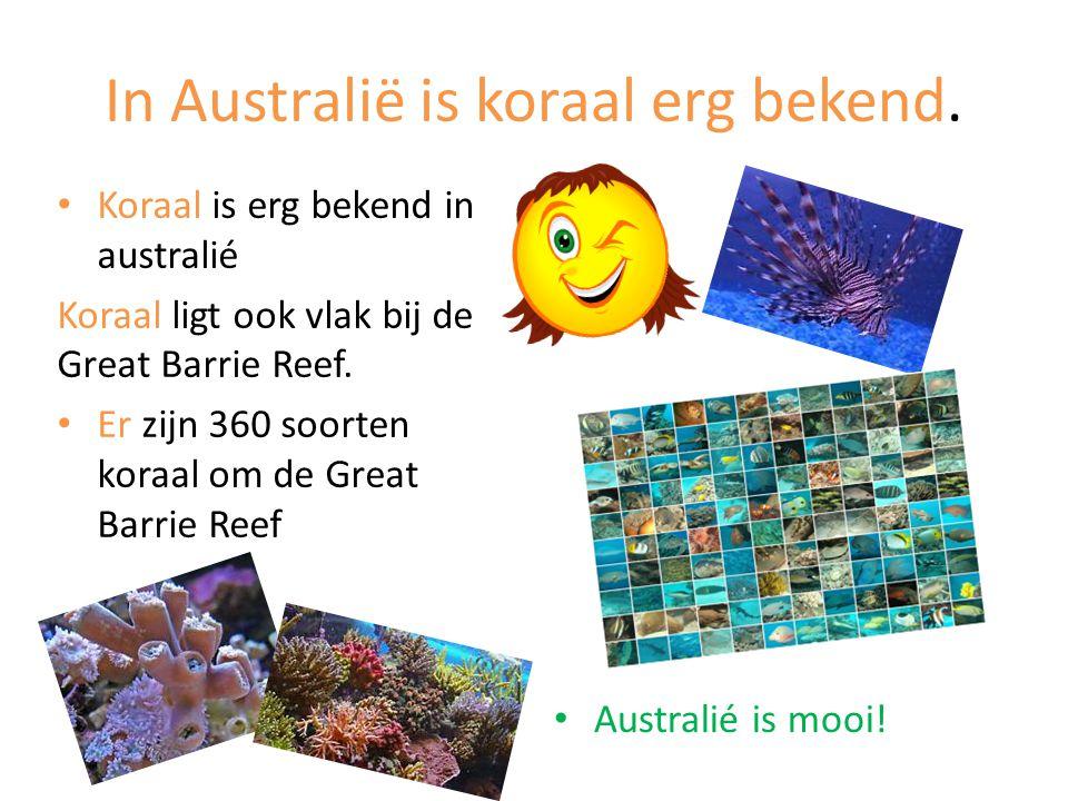 In Australië is koraal erg bekend.