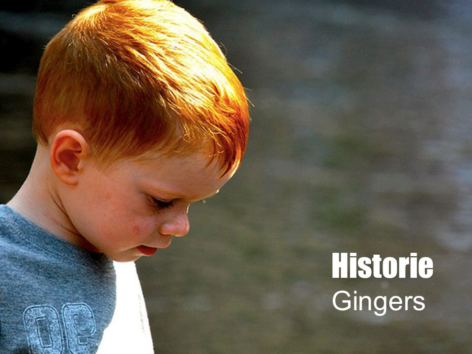 Historie Gingers