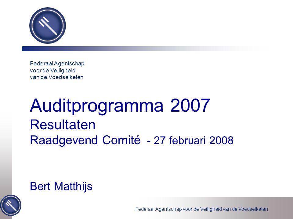 Auditprogramma 2007 Resultaten Raadgevend Comité - 27 februari 2008